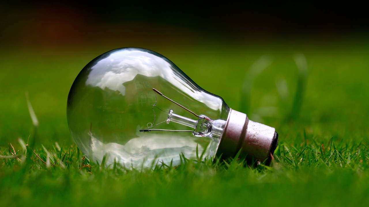 Ekologiczne zamienniki produktów codziennego użytku